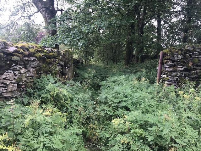 Dales Way, Cumbria