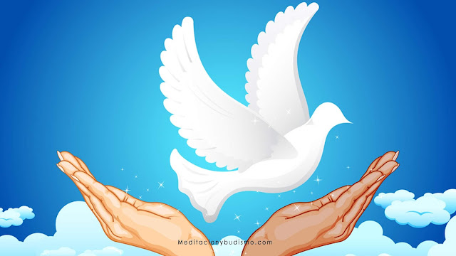 Los 5 minutos de silencio que te traerán paz