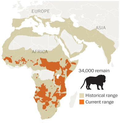 Distribución histórica de leones por el sur de Europa y África