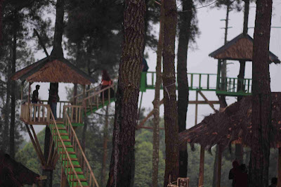 rumah pohon pabangbon leuwiliang