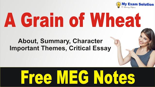 A Grain of Wheat Summary, a grain of wheat in english literature, english literature, a grain of wheat summary in hindi, a grain of wheat in hindi