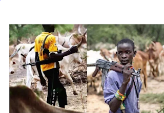 Repentant Fulani bandits reveals why they attack, kidnap people