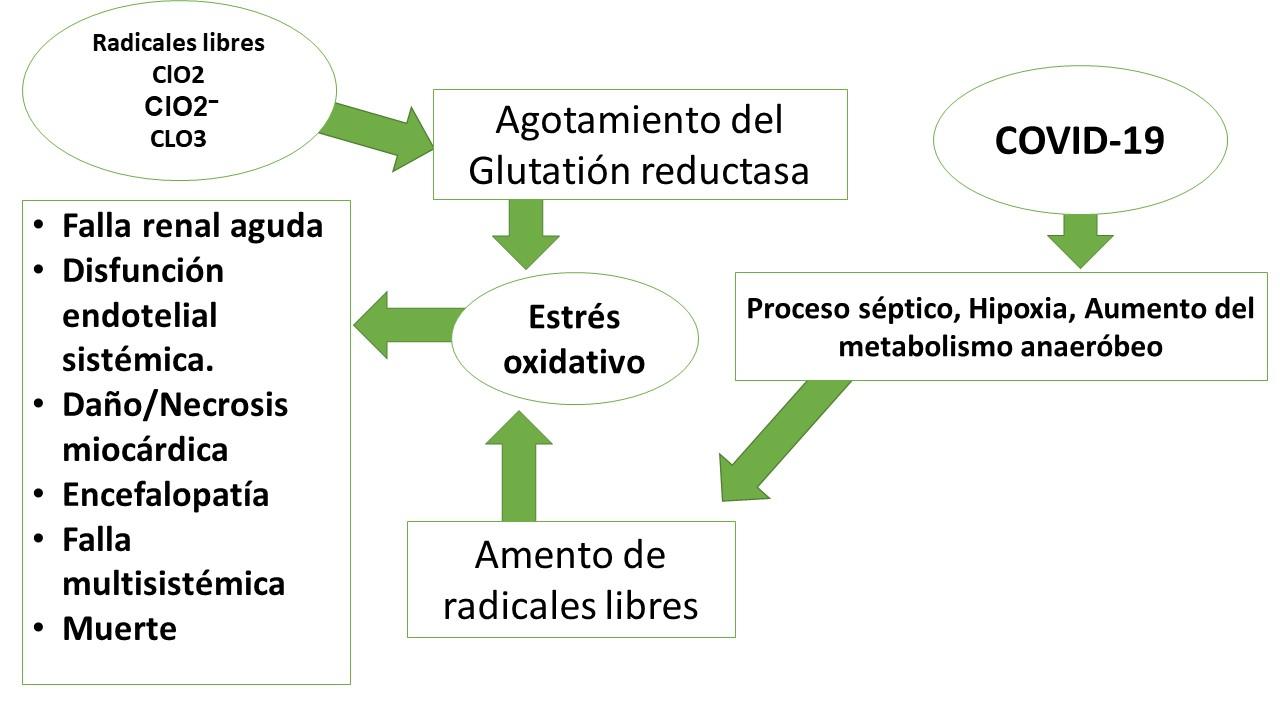 mecanismo de accion y fisiopatologia del dioxido de cloro en el coronavirus