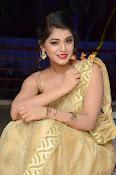 Yamini Bhaskar sizzling in saree-thumbnail-11