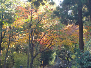 壽福寺の紅葉