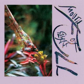Macie Stewart - Mouth Full of Glass Music Album Reviews