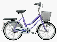 City Bike Wimcycle Mini Nexia 20 Inci