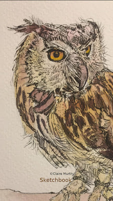 Sketchbook Owl. How to draw an owl.