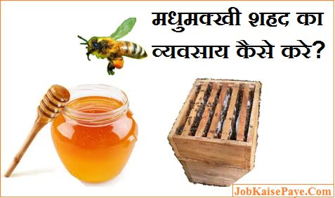 How to do bee honey business in Hindi