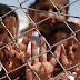 Obchod s ľudskými orgánmi naberá na sile, kto za to môže?