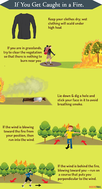 What To Do In The Case Of A Wildfire