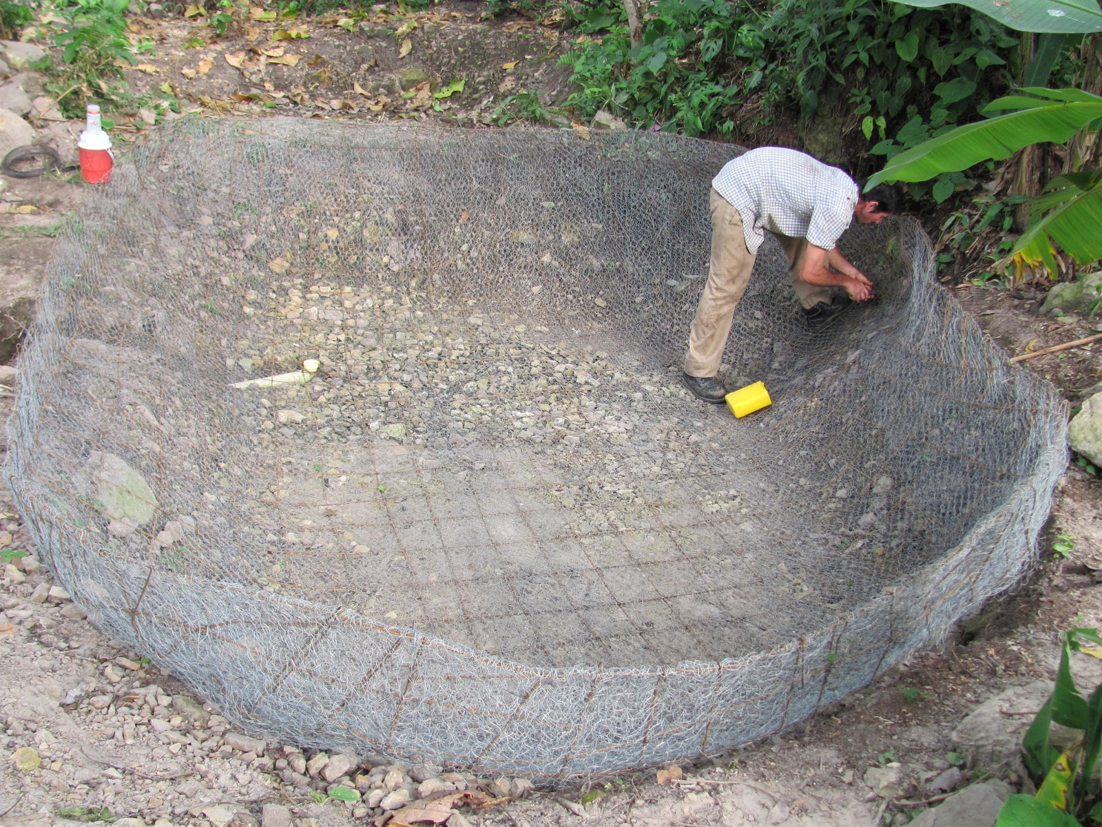 Estanque para peces for Peces que se cultivan en estanques en panama