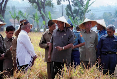 System of Rice Intensification