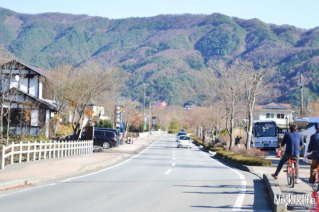 【日本。河口湖】紅葉回廊:觀賞紅葉和富士山的好地點! 3