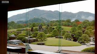 View of the garden through the window
