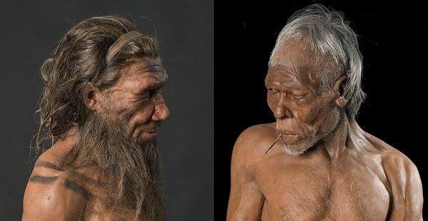 Los neandertales pueden haber tenido un umbral de dolor muy bajo