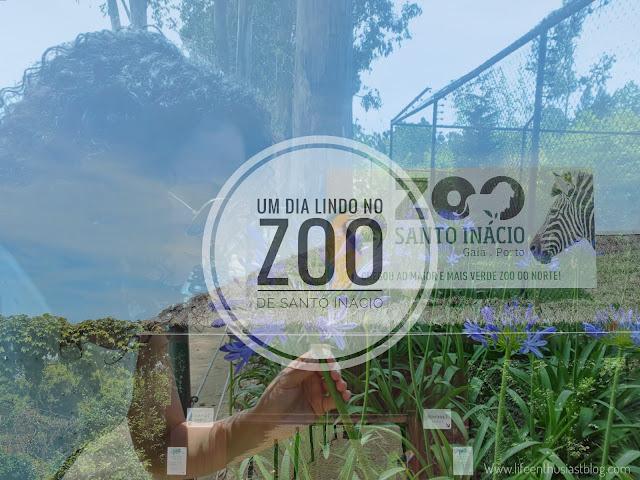 Portugal | Um dia no Zoo de Santo Inácio