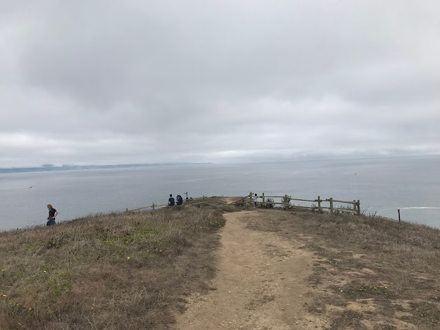 Hiking the Chimney Rock Trail Point Reyes
