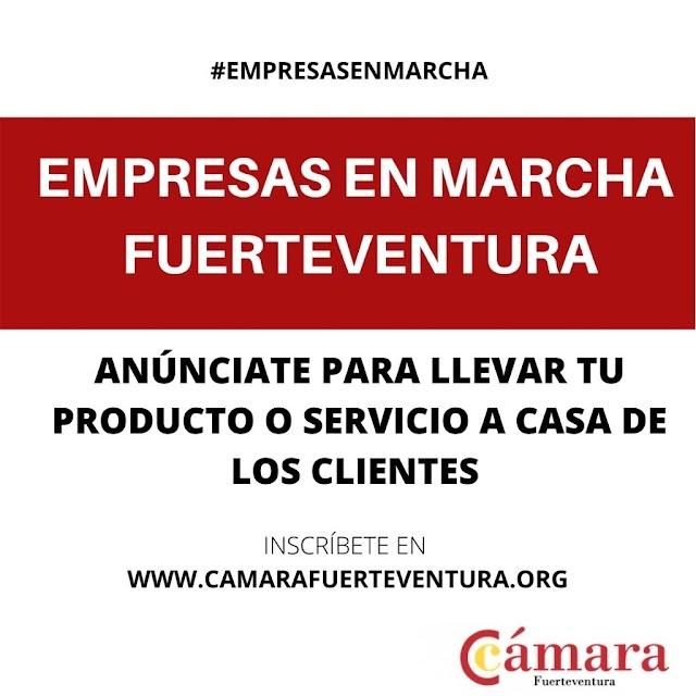 """Cámara de Comercio de Fuerteventura busca empresas que estén """"En Marcha"""" para ayudarles a comercializar sus productos y/o servicios"""