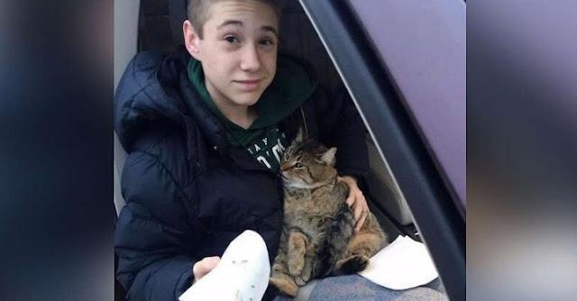 Из мчащегося по мосту фургона выбросили кота, подросток немедленно бросился на помощь животному!!!