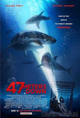 Sinopsis film 47 Meters Down (2017)