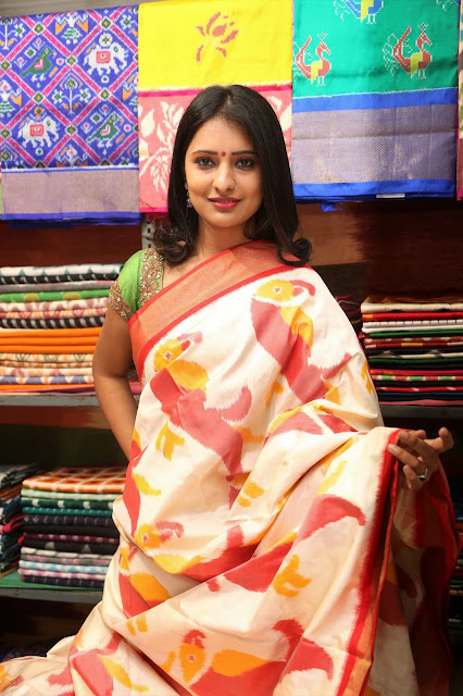 Actress Nikitha Bisht Launches Pochampally IKAT art mela @ Nizampet