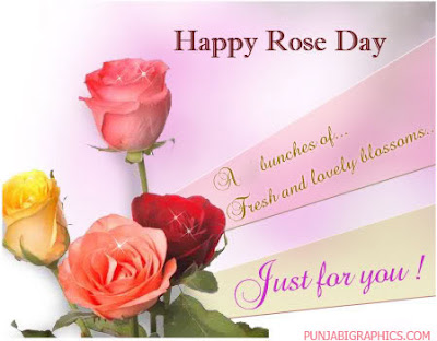 rose day images 2016