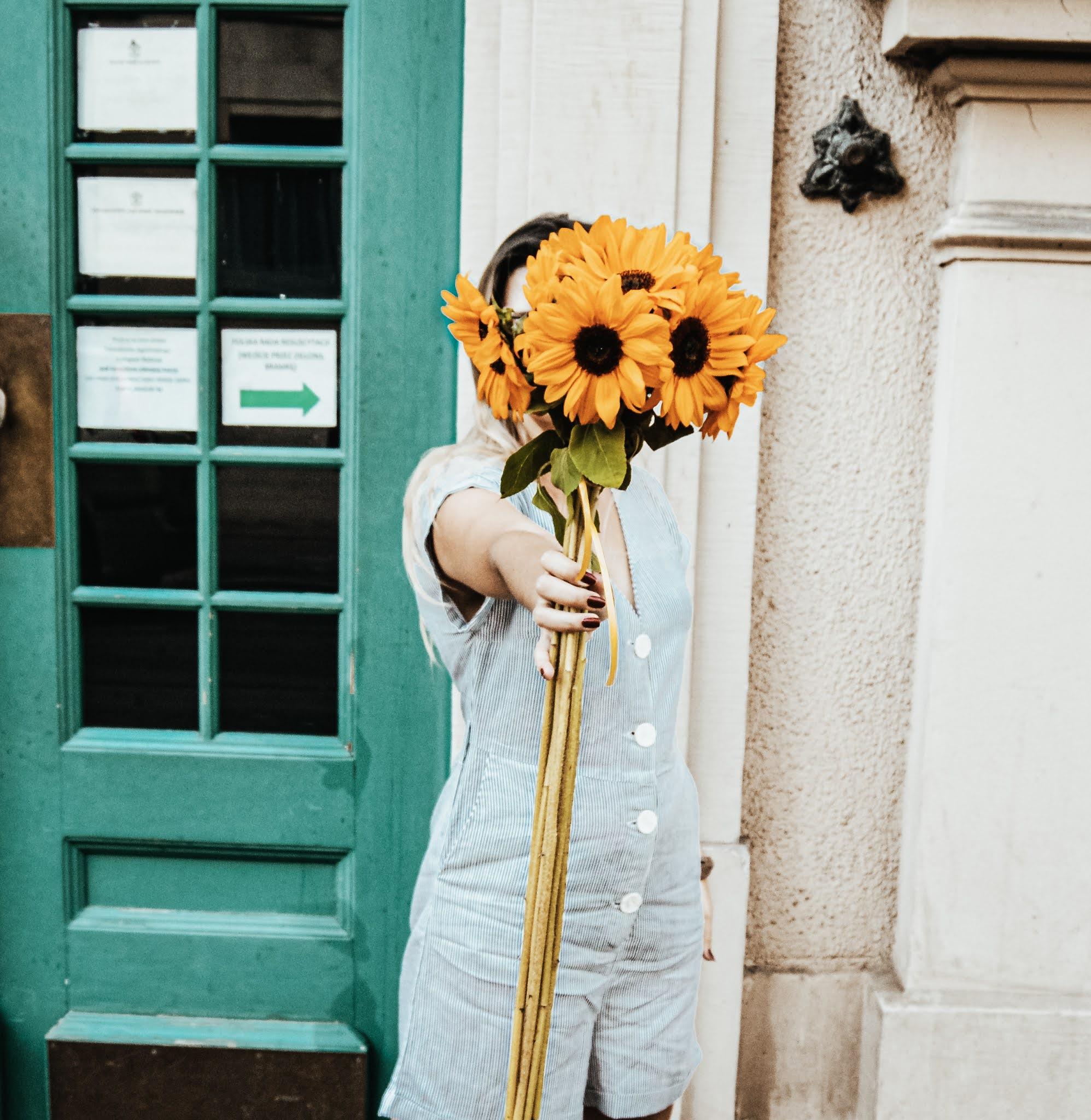 Słoneczniki pinterest piękne zdjęcie słonecznikó