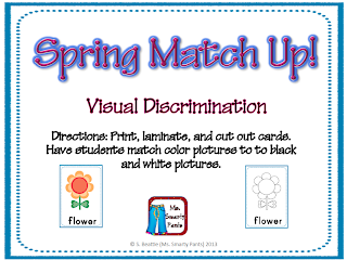 Visual Discrimination Match Up