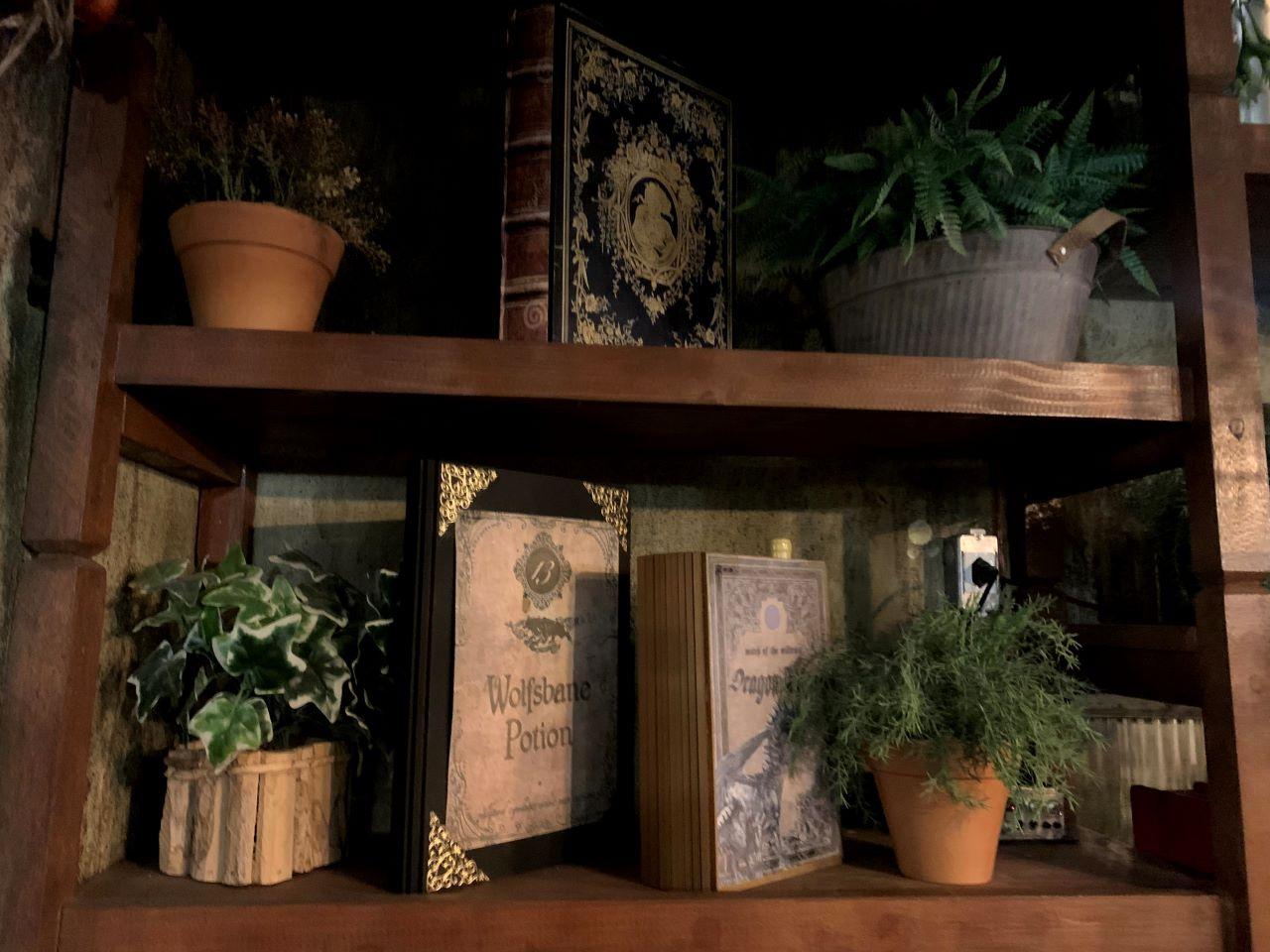 decoracao livros saga harry potter