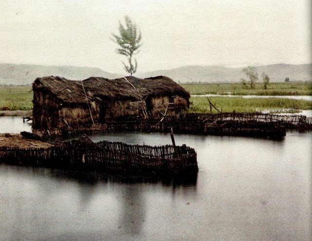 Fixed fishing structure for catching eels in the Daljan district., Macedonia in 1913