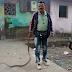 सर्प मित्राकडून ५ सापांना जीवदान विषारी-बिन विषारी सापांचा पुन्हा मानवी वस्तीत शिरकाव