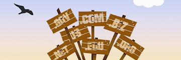 Jenis-Jenis Domain Yang Wajib Dipahami Sebelum Membuat Website