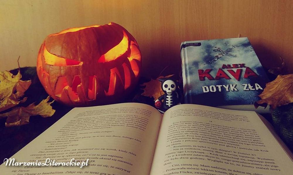 Alex Kava, Dotyk zła, Recenzja, Marzenie Literackie