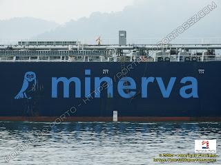 Minerva Pacifica