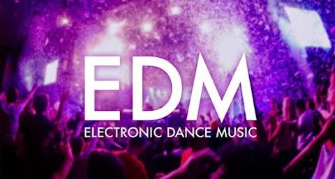 Soal Selera dan Musik EDM
