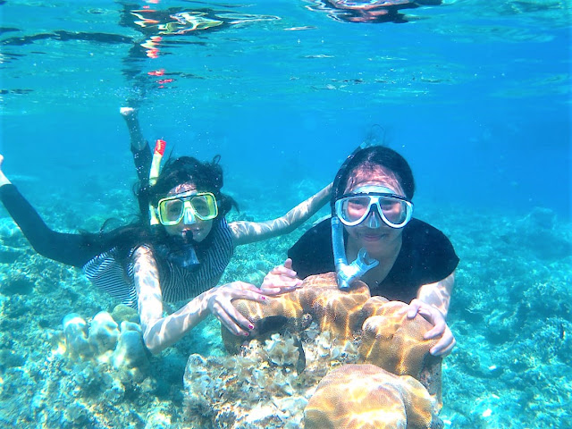 Harapan Island Tour Package Snorkeling
