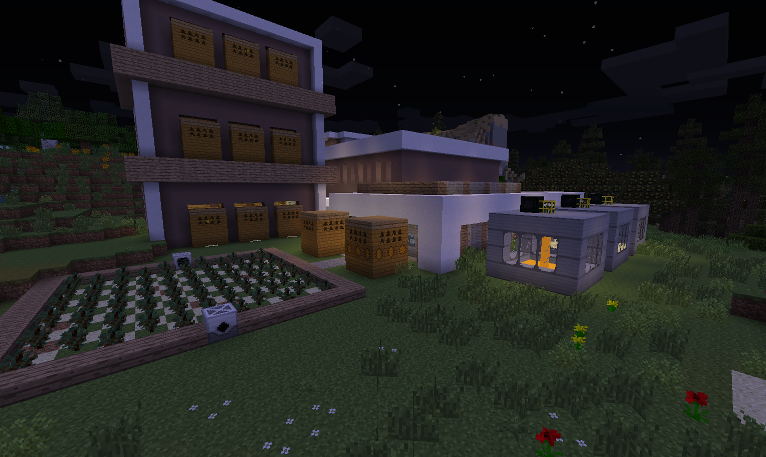 Modjo Minecraft: New server, new bee factory