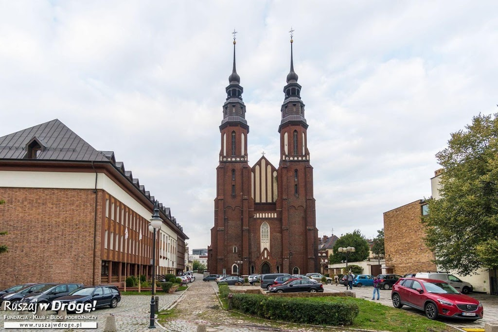 Katedra w Opolu