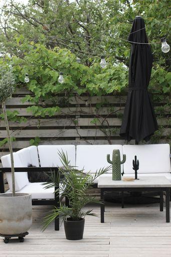 annelies design, webbutik, webbutiker, webshop, nätbutik, inredning, kaktus, uteplats, kaktusar, uteplatser, trädäck, trädäcket, utemöbler, svartvit soffa, svart och vitt, svartvita, parasoll, stort, palm, palmer, växter, inspiration,