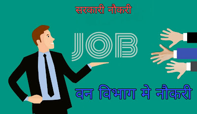 Job in forest department