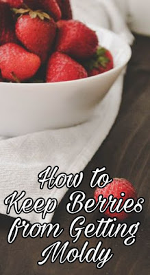 How to Keep Berries from Getting Moldy