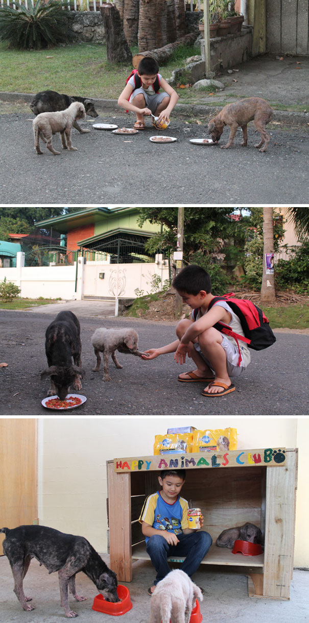 #4 9-Year-Old Boy Created A No-Kill Animal Shelter In His Garage - 12 Kids Who'll Restore Your Faith In Humanity