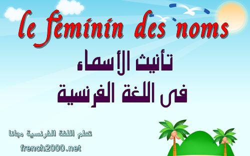 تأنيث الاسماء فى اللغة الفرنسية