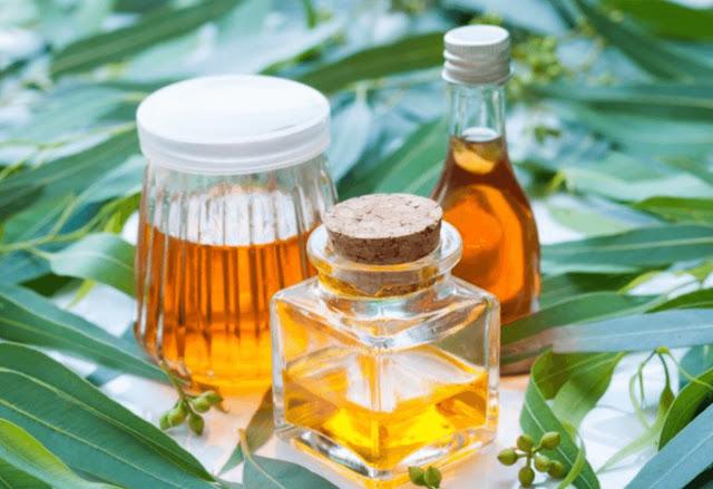 Raisons pour lesquelles vous devez avoir une bouteille d'huile d'eucalyptus