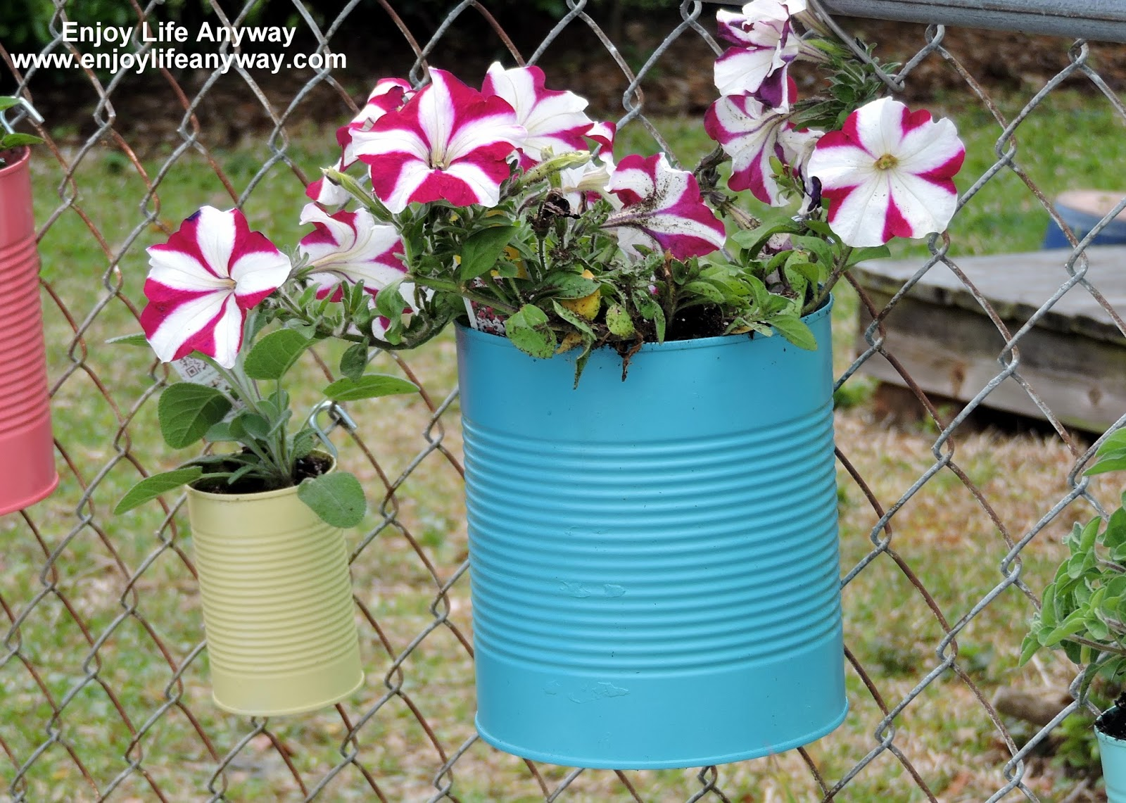 Enjoy Life Anyway: Dress Up A Fence With DIY Tin Can Planters