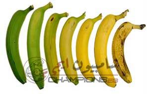 انواع الموز لكمال اجسام , علاقة الموز لبناء العضلات