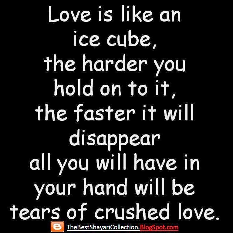 Love Finds You Quote: Love Quotes For Whatsapp Status In English