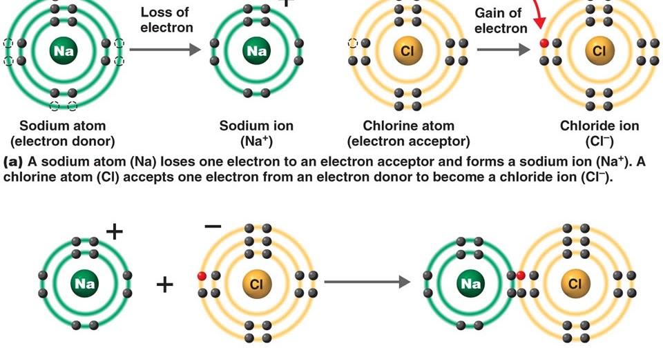 Sodium Chloride Dot Diagram Wiring Diagram Gp