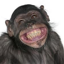 Mono Sonrisas Y Sus Tertulias Cómo Se Gobierna El Mundo